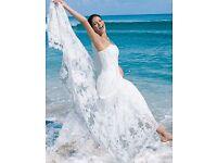 Stunning Alfred Angelo Wedding Dress Sz 12/14 Style 1816 Ivory. UK/Beach BNWOT