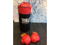 Boxing Punch bag & Gloves