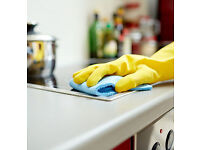 Professional domestic cleaning weekly or fortnightly, we also do ironing!
