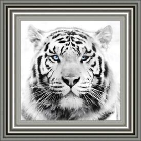 Glass Art Pictures - White Tiger