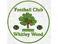Five-A-Side league football