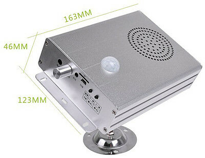 High Quality PIR Motion Sensor Activated Audio Player