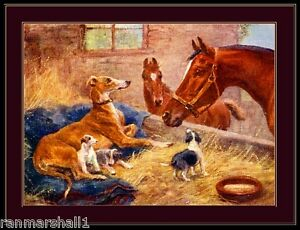 English Print Greyhound Dog Puppies Art Picture