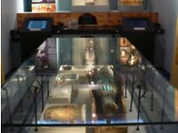 Paranormal Investigation Torquay Museum Sleepover