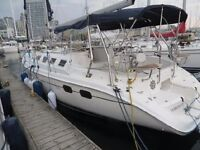 Super clean and well equipped Hunter 386