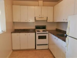 Downtown All Inclusive Two Bedroom Apartment