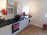 Brilliant 2 bedroom apartment in Stratford part dss with guarantor accepted