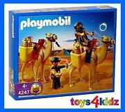 Playmobil Grabräuber