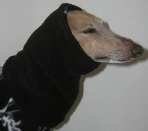 2 DOG SNOODS Hat GREYHOUND WHIPPET DOBERMAN PINSCHER SALUKI HOUND any colors