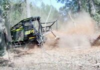 MULCHING/ LAND CLEARING/ LOT CLEARING/ BRUSH CLEARING