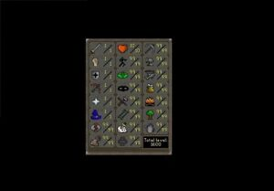 Old School Runescape Powerleveling, Fire Capes and Questing!