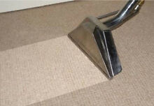 Steam Carpet Cleaning , Eco Friendly , Carpet cleaning Bondi Beach Eastern Suburbs Preview