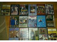 Pigeon dvds