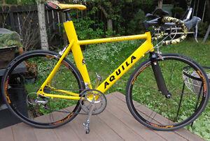triathlon AQUILA CRONOMOETRO  bike in MINT condition