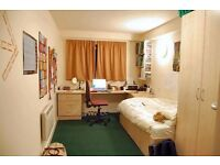 ***CHOOSE THE BEST ROOM! ALL NEW BRAND PROPERTY! ALL INCLUDED! CALL NOW!