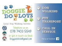 Dog walking, pet taxi, home call in service