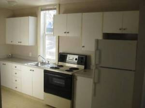 Bright 1 bedroom Suite for Rent is available now