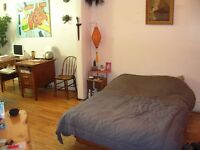 4 1/2 Winter Sublet - Jan-Feb-March - Montreal (Mile End)