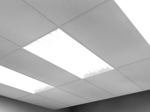 2x4 T8 Fluorescent lights for garage or business.