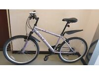 "Shimano equipped Apollo Lightweight 26"" wheels Hybrid Ladies or Man Mountain Bike £60"
