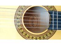 G8. Guitar 3/4 size Herald