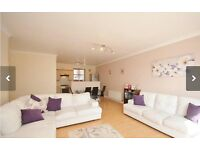 Stunning one bedroom flat available now
