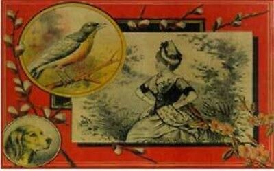 Woman bird & dog - print decal sticker trunk liner paper chest steamer vintage