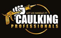 CAULKING PROFESSIONALS FAST, Affordable  (window sealant)