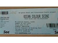 Ocean Colour Scene Sunday (today) 24th July. One ticket in hand. £30