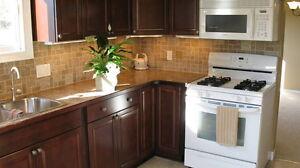 Home Renovations Kitchener / Waterloo Kitchener Area image 5
