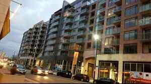 Luxury- Furnished- 1Bedroom/1Bath Condo in the heart of Westboro