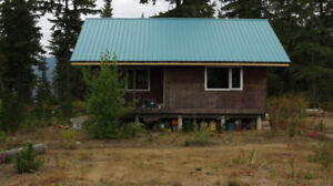 RECREATIONAL LAND FOR SALE 40 ACRES WITH CABIN