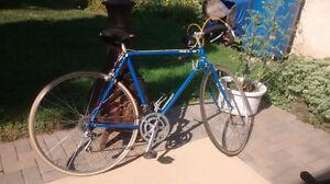 Miyata Road Bike