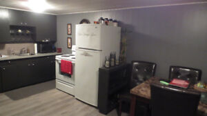 Very Nice West Hill basement suite for rent