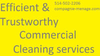 TRUSTWORTHY CLEANING SERVICES AND MAINTENANCE IN KIRKLAND