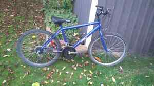 """Supercycle 24"""" bike working condition"""