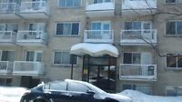 **Beautifully renovated 31/2 apartments in Plateau**