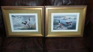 Pair of Water Fowl Pictures