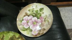 Provincial Bone China Plates 12 in total