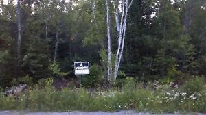 Très terrain boisé à vendre prix sous évaluation municipale