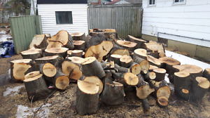Tons of fire wood