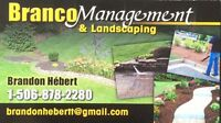 Looking for experience landscaper