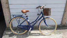Pendelton Adult Bike