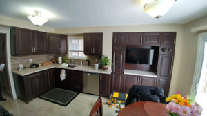 Kitchen Cabinets,Countertop,Backspalsh,Refinshing