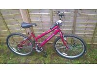 Emmelle mountain bike bicycle