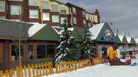 BIG WHITE STUDIO CONDO - BEST LOCATION IN THE VILLAGE