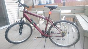 Adult Full Size Mountain Bike