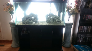 For Sale: 90 Gallon Fish Tank w / Stand & Filter