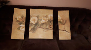 3pc canvas painting