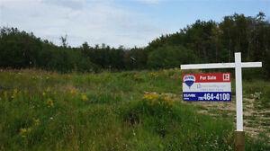 10.85 Acre Property In Canyon Meadows Estates Strathcona County Edmonton Area image 1